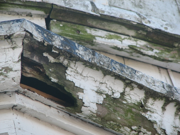 Exterior trim around the dome that has seen better days.